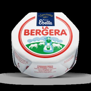 Bergera