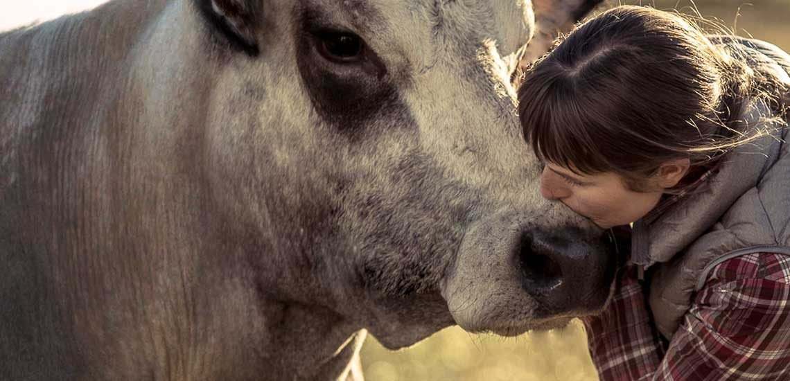 Il Benessere Animale è il nostro impegno quotidiano